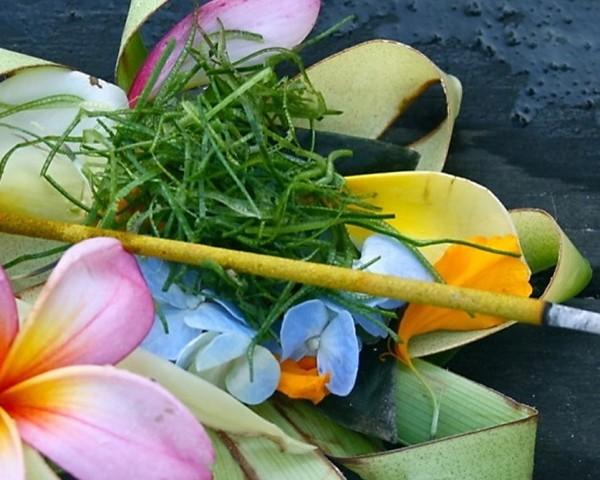 Voyage de Noces à Bali et Rituel Balinais